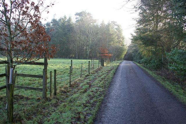 Mordington House Pasture