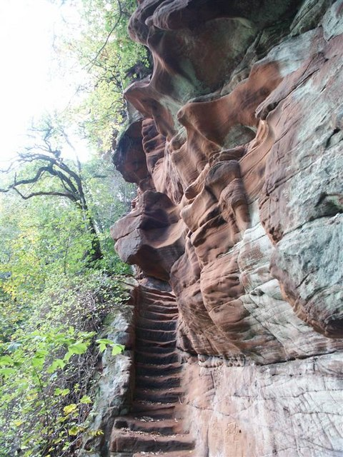 Steps cut into the sandstone cliff next to the River Ayr