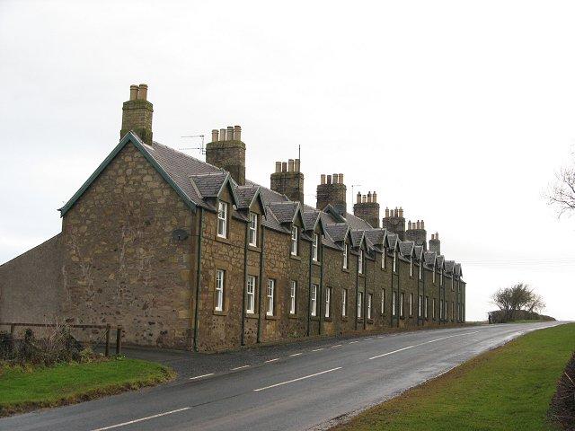 Whitsomehill
