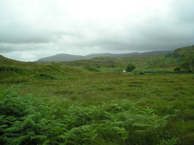 Rannoch River and rough pasture