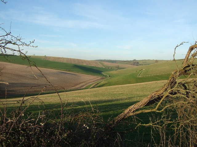 Looking up the dry valley towards Magiston Hill and Bushes Barn
