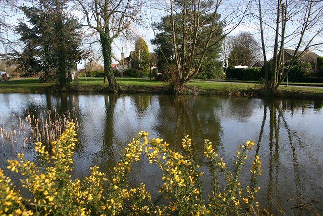 Village pond, Bacton