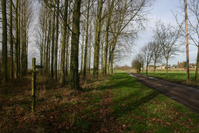 Track and bridleway to Westhorpe Lodge Farm