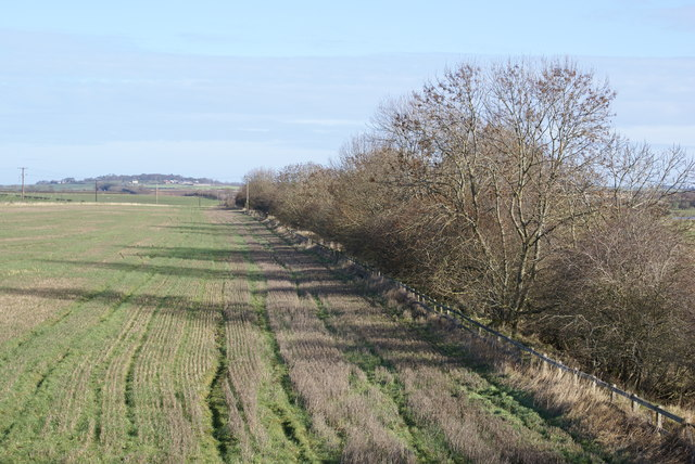Farmland Cutting