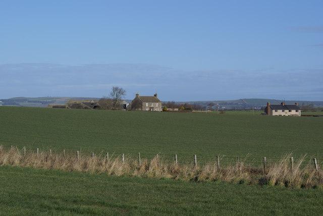 Norham East Mains Farm