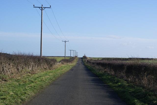 Roadside Powerlines