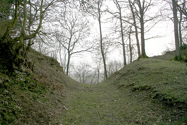 Old Road to Rushall, Hooper's Oak