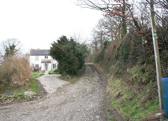 Hooper's Oak