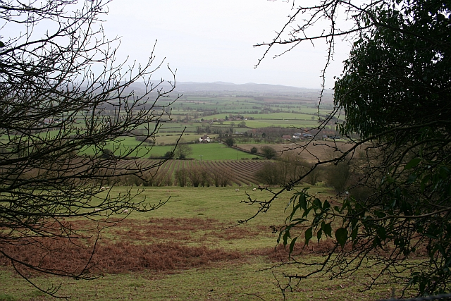 Little Hill from Marcle Hill