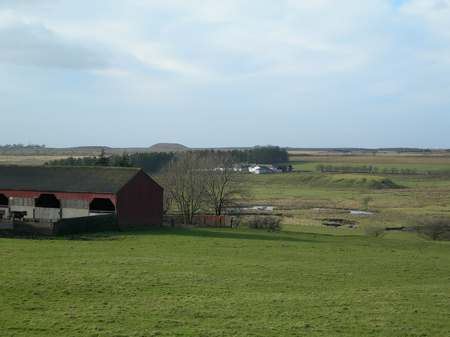 Carbellow Farm