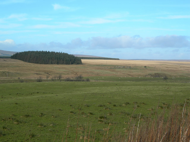 Fields, Wood and Moor