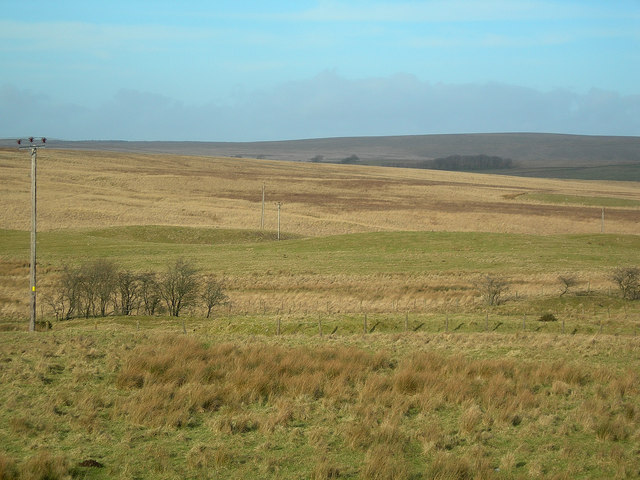 Moorland View
