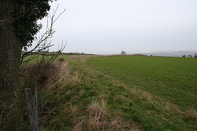 Oldbury Camp, Iron Age Hill Fort