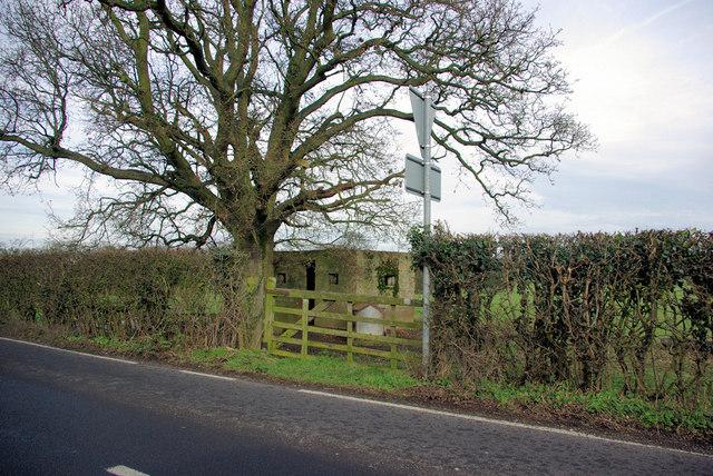 Pillbox, Tree and Gate