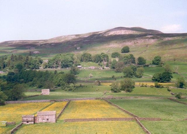 Swaleside pastures at Healaugh