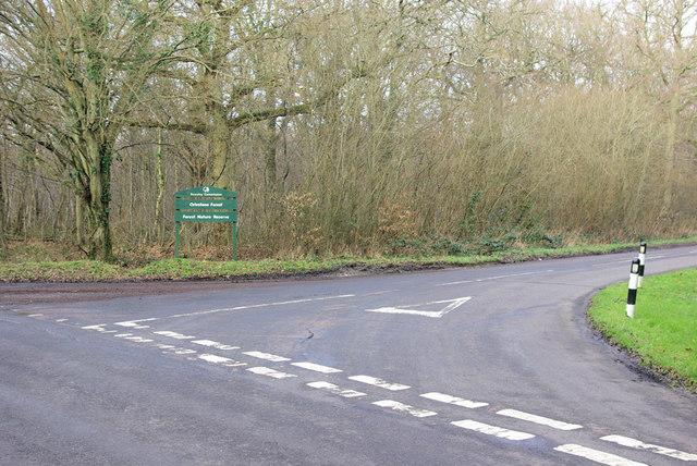 Lane Junction by Birchett Cottage.