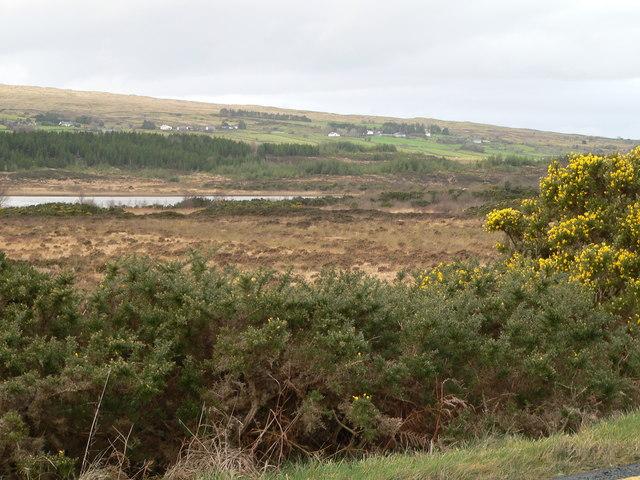 Loughnacorralea (Lake of the grey monster?)