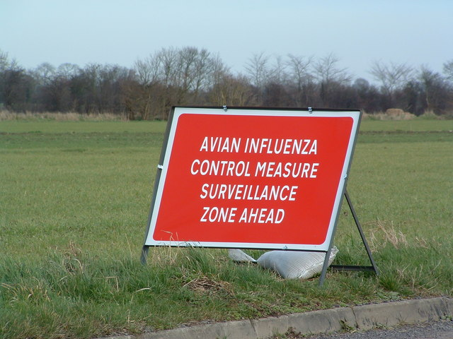 Avian Influenza (Bird Flu) Sign