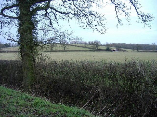 Fields near Minety