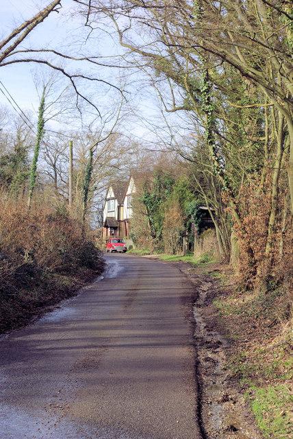 Harbourne Lane