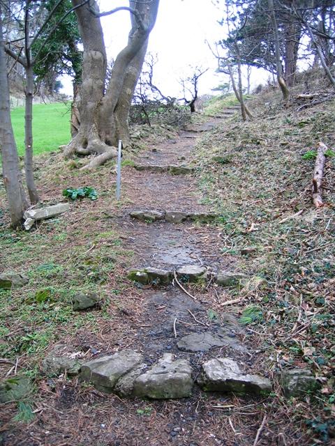 The Summit Trail