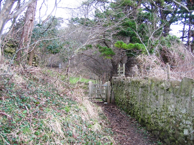 Footpath in Haulfre Estate