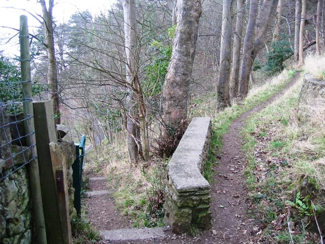 Descending the Summit Trail