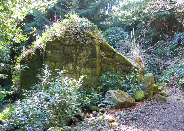 Ruined Cottage in Nant y Ffrith Woodland