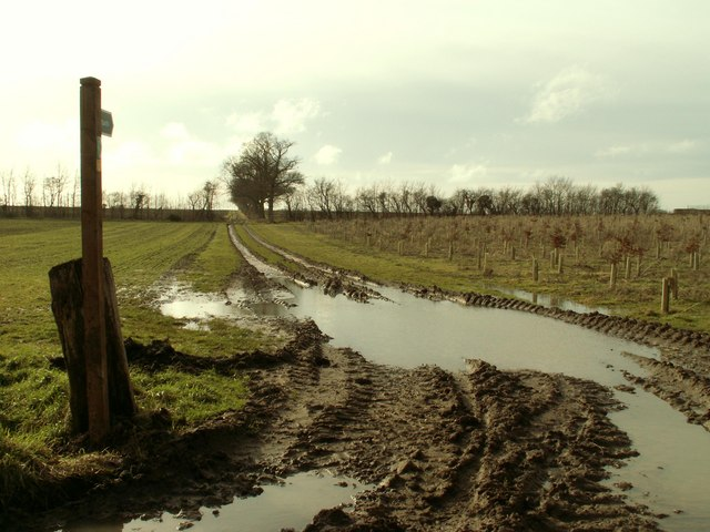 A very muddy footpath