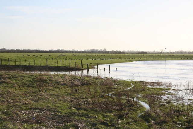 Smithy Marsh outflow