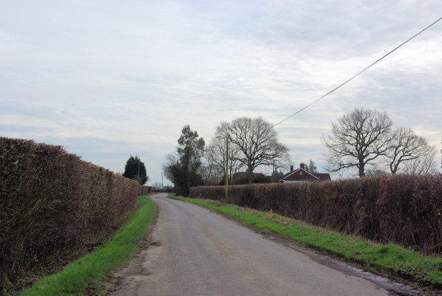 Coldblow near Beaconhill Nurseries