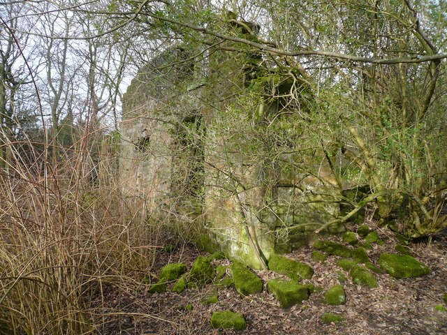 Bottom Moor - (Derelict Building with Moss)
