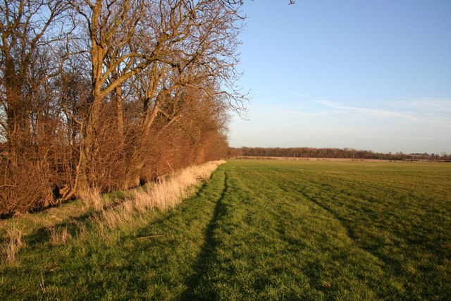 Farmland off North Scaffold Lane