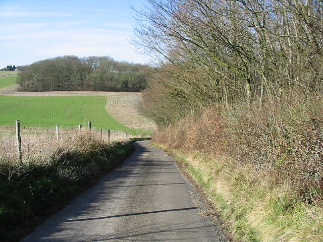 Looking W along Bow Hill