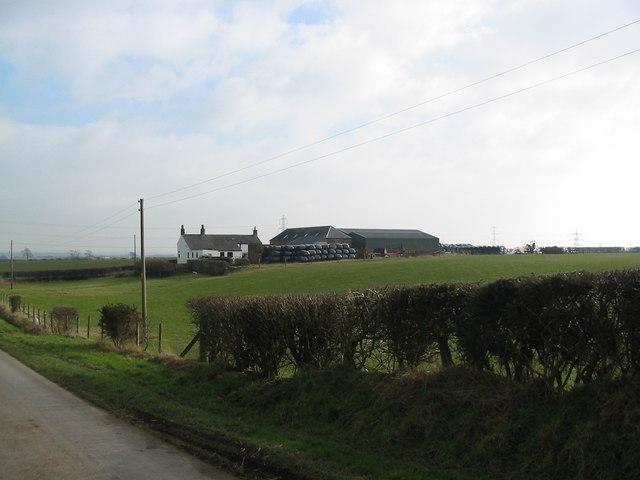 Milligansbushfield