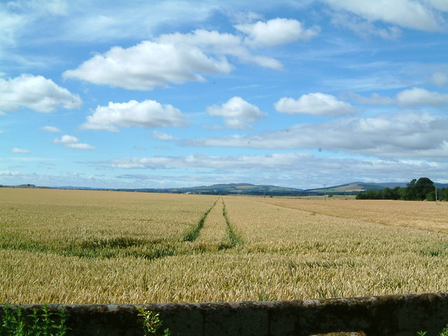 Looking south west from Burnside Road Fettercairn