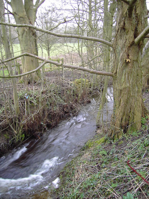 Outfall stream from Coate Water, Swindon