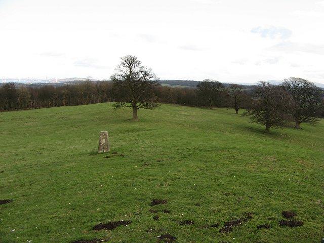 Parkland, Binns Hill