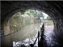 ST7565 : Tunnel entrance, Bath by Roger Cornfoot