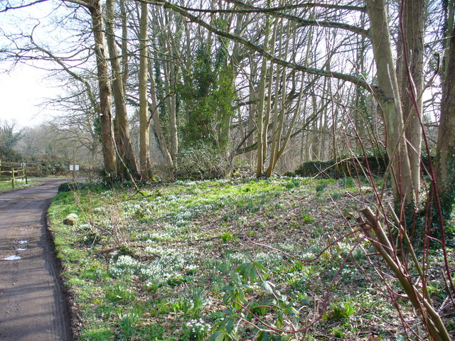 Footpath near Rookery Farm