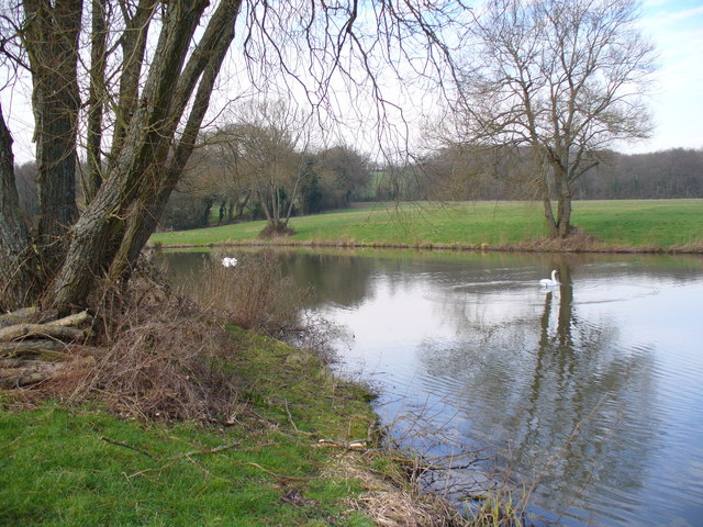 Anglers' Pond, North-west of Kingsley.