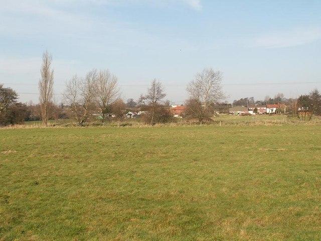 Waveney Meadow