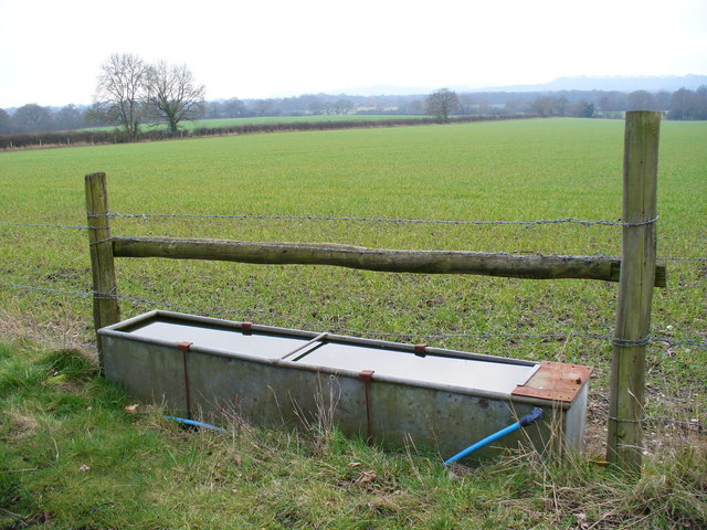 Water Trough and Grassy Field