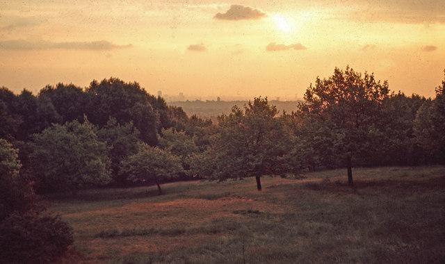 Sunset - One Tree Hill - c1965
