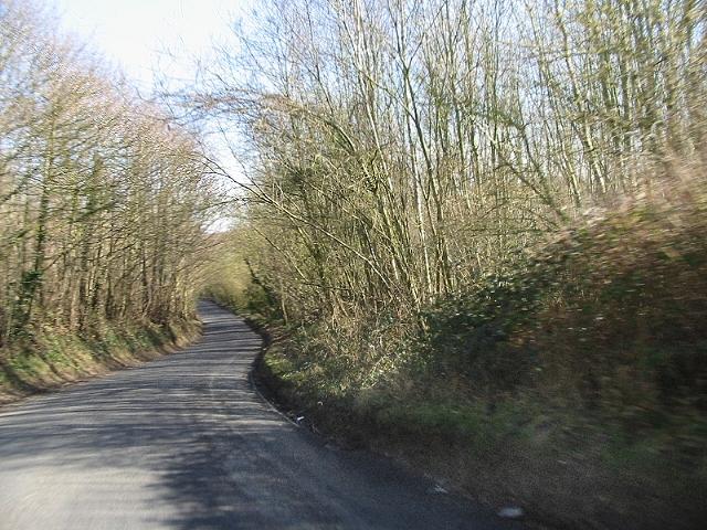 Heading E on Bridge Road through Whitehill Woods