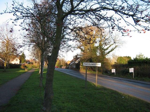 The Tacolneston Village Sign