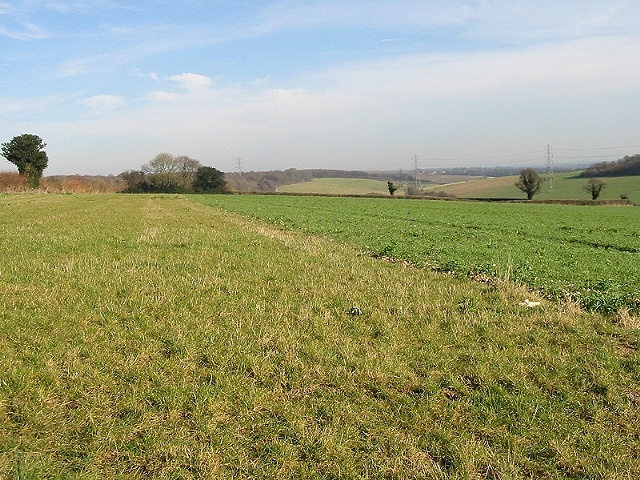 View across farmland from Tapleys Hill