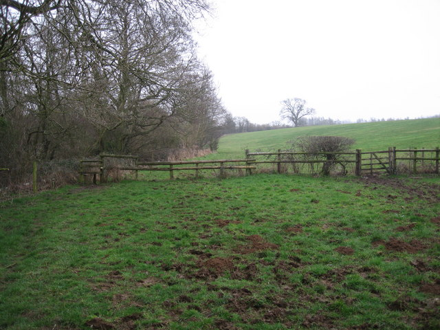 Pasture next to the River Avon