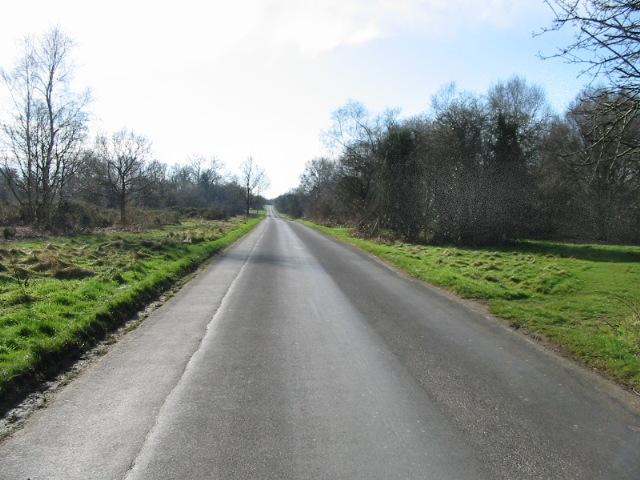 Straight ahead, Bossingham Road, Stelling Minnis