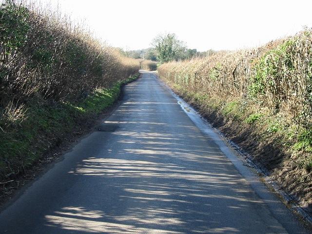 Looking SW towards Lymbridge Green